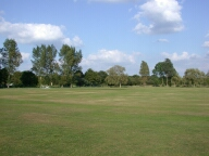 Cricket green, Chobham