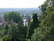 View from castle gardens, Farnham