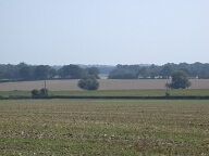 Fields, Tandridge