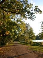 Path, Virginia Water