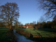 Green and stream, Abinger Hammer