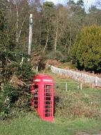 Telephone box, Holmbury St Mary