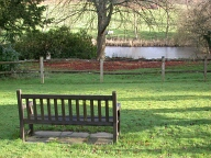Bench, Holmbury St Mary