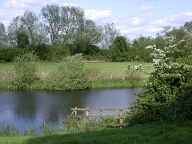 Pond, Runnymede, Egham