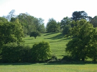 Coopers Hill, Runnymede, Egham