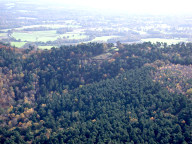 Aerial photograph of Leith Hill with tower