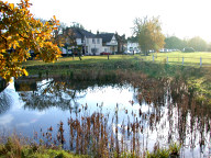 Village pond, Weston Green