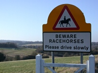 Racecourse sign, Epsom Downs