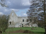 Newark priory, Pyrford