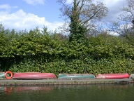 Rowing boats by the River Wey, Guildford