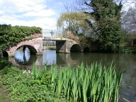 Arched bridge over river Wey, Farncombe