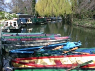 Rowing boats at Farncombe, Farncombe