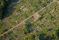 Aerial photograph of Allotments near Camberley