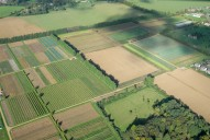 Aerial photograph of Fields south-west of Godalming