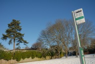Bus stop, Wray Common, Reigate