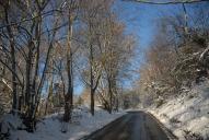 Wray Lane, Reigate