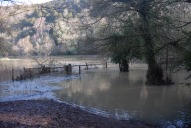 Flooding near Box Hill stepping stones, Dorking