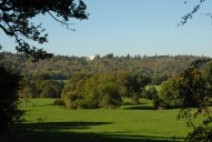 View from Crabtree Lane to Norbury Park, Dorking