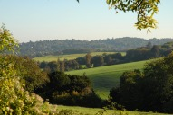 View towards Denbies Vineyard from near Crabtree Lane, Dorking