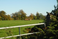 Field and hay near Crabtree Lane, Dorking