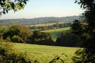 View near Crabtree Lane, Dorking