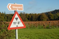 Denbies Vineyard signs, Dorking
