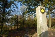 Signpost, Holmbury Hill, Holmbury St Mary