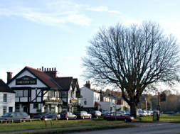 Village green Weston Green